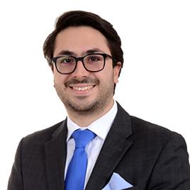 Jorge Guillermo Domínguez-Michelén